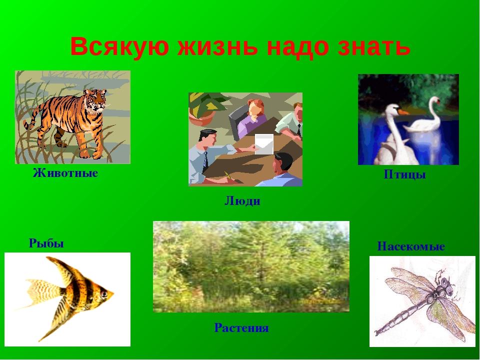 Всякую жизнь надо знать Люди Животные Рыбы Птицы Насекомые Растения
