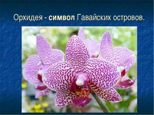 Орхидея - символ Гавайских островов.