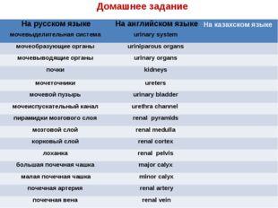Домашнее задание На русском языкеНа английском языкеНа казахском языке моче