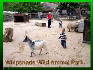 Whipsnade Wild Animal Park.
