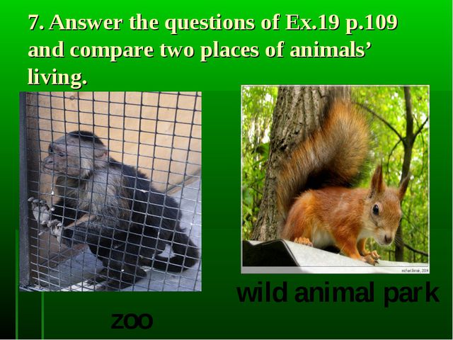 7. Answer the questions of Ex.19 p.109 and compare two places of animals' liv...
