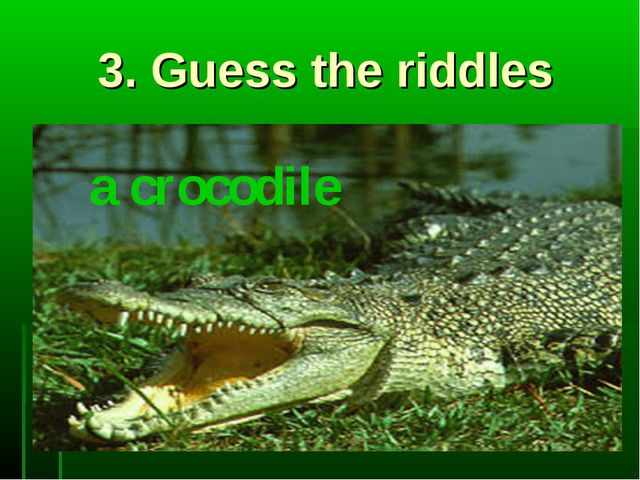 3. Guess the riddles a crocodile