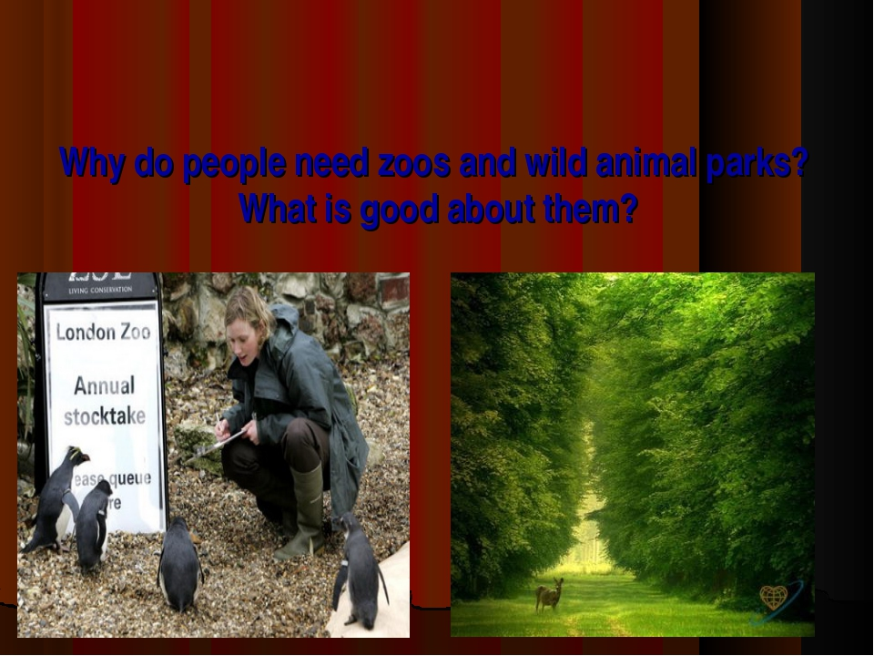 Why do people need zoos and wild animal parks? What is good about them?