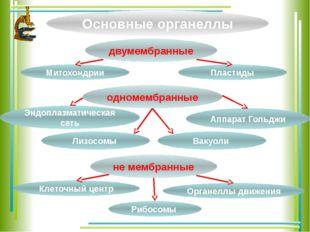 Основные органеллы двумембранные одномембранные не мембранные Митохондрии Орг