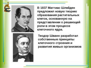 В 1837 Маттиас Шлейден предложил новую теорию образования растительных клеток