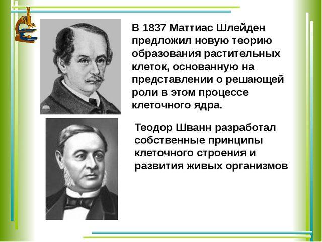 В 1837 Маттиас Шлейден предложил новую теорию образования растительных клеток...