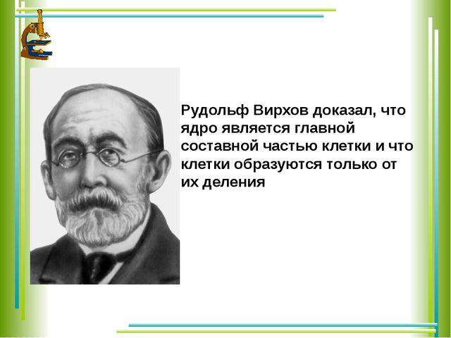 Рудольф Вирхов доказал, что ядро является главной составной частью клетки и...