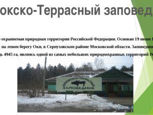 Приокско-Террасный заповедник Особо охраняемая природная территория Российско
