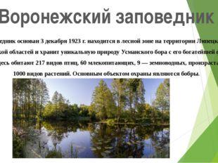 Воронежский заповедник Заповедник основан 3 декабря 1923 г. находится в лесно