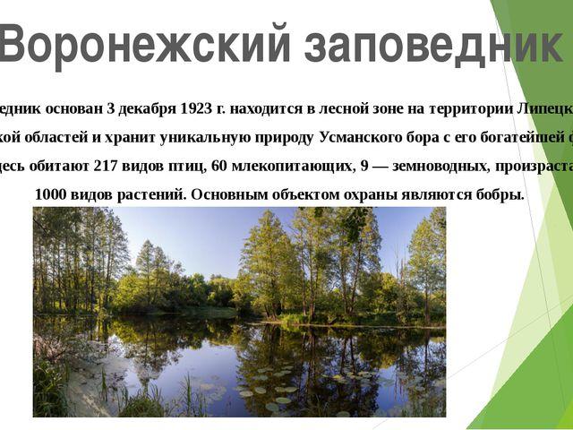 Воронежский заповедник Заповедник основан 3 декабря 1923 г. находится в лесно...