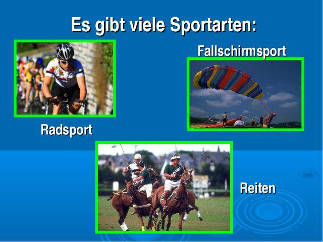 Es gibt viele Sportarten: Fallschirmsport Radsport Reiten