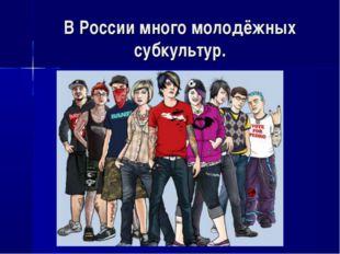 В России много молодёжных субкультур.
