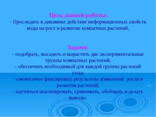 Цель данной работы: - Проследить в динамике действие информационных свойств