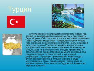 Турция Мусульманам не запрещается встречать Новый год, однако не рекомендуетс