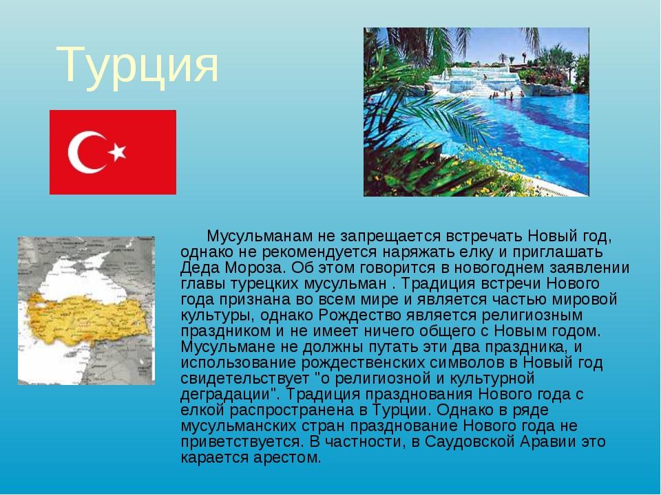 Турция Мусульманам не запрещается встречать Новый год, однако не рекомендуетс...