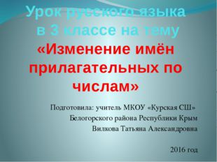 Урок русского языка в 3 классе на тему «Изменение имён прилагательных по числ