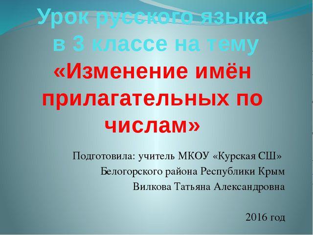 Урок русского языка в 3 классе на тему «Изменение имён прилагательных по числ...