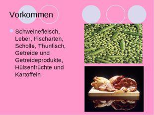 Vorkommen Schweinefleisch, Leber, Fischarten, Scholle, Thunfisch, Getreide un