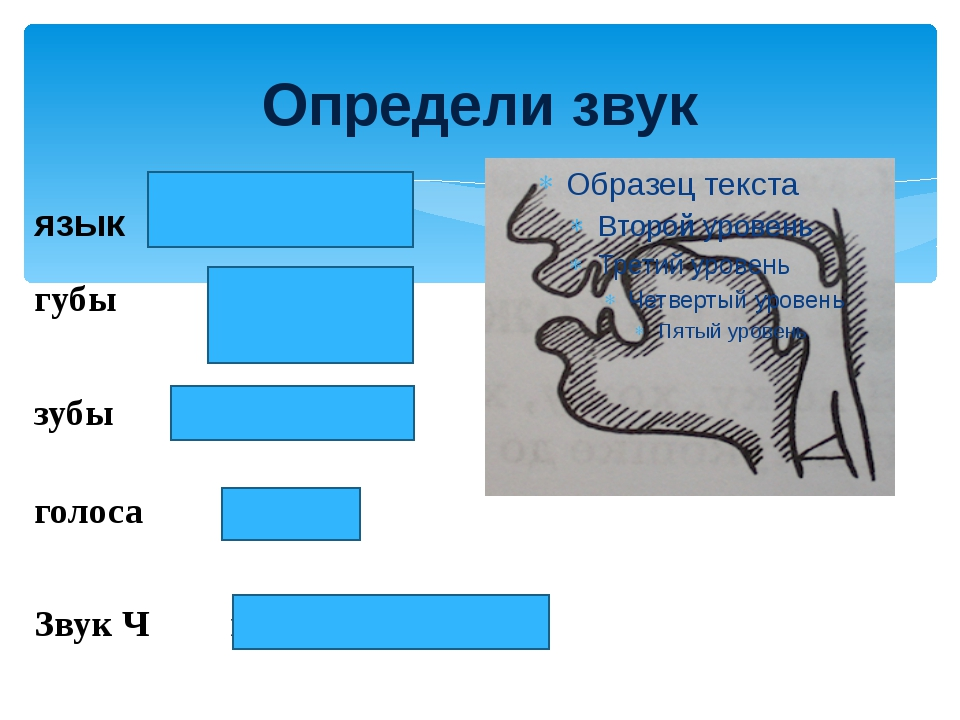 Определи звук язык поднят вверх губы выдвинуты вперёд зубы сближены голоса н...