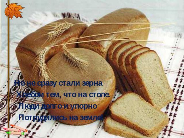 Но не сразу стали зерна Хлебом тем, что на столе. Люди долго и упорно По...