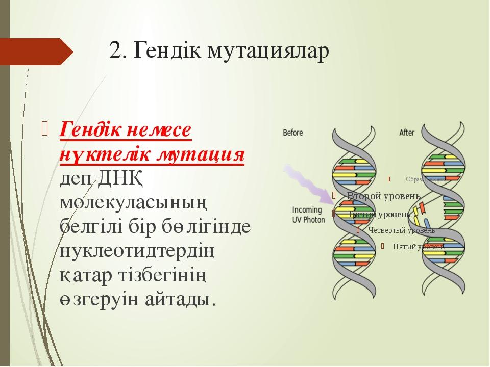 2. Гендік мутациялар Гендік немесе нүктелік мутация деп ДНҚ молекуласының бел...