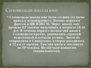 Соловецкая школа юнг была создана согласно приказу командующего Военно-морски