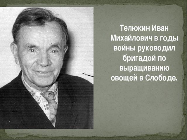 Телюкин Иван Михайлович в годы войны руководил бригадой по выращиванию овощей...