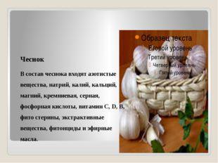 Чеснок В состав чеснока входят азотистые вещества, натрий, калий, кальций, м