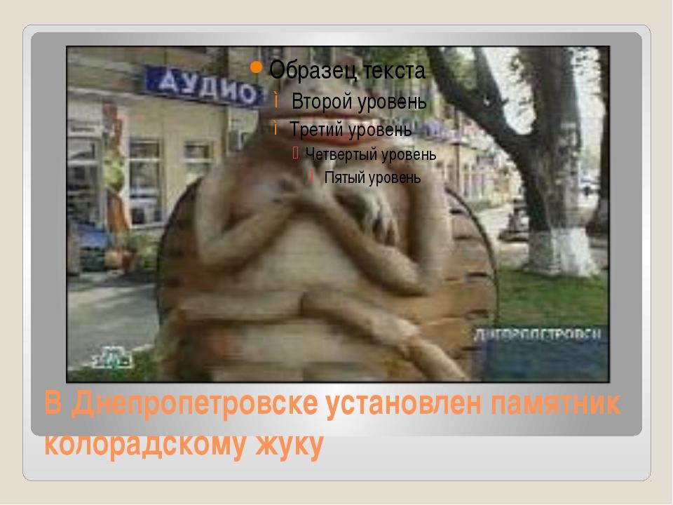 В Днепропетровске установлен памятник колорадскому жуку