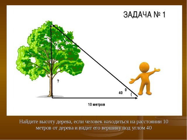 Найдите высоту дерева, если человек находиться на расстоянии 10 метров от дер...