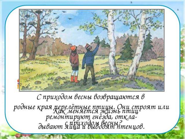 Картинки весны в жизни живой природы