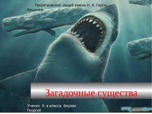 Загадочные существа Теоретический лицей имени Н. К. Гергиу, г. Кишинёв Учени