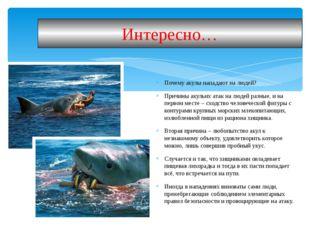 Почему акулы нападают на людей? Причины акульих атак на людей разные, и на пе