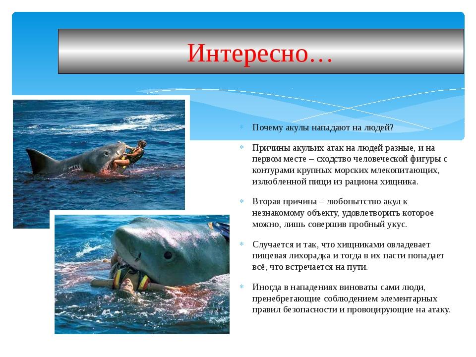 Почему акулы нападают на людей? Причины акульих атак на людей разные, и на пе...