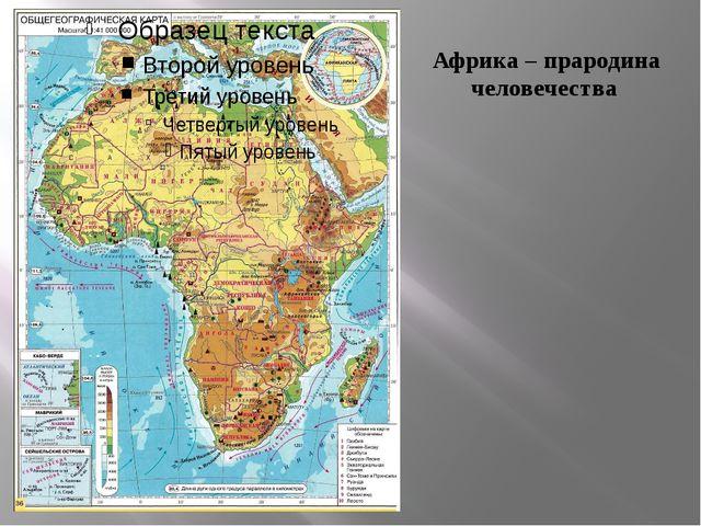 Африка – прародина человечества