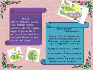 Мақта Мақта – бағалы өсімдік. Одан тамаша талшық алынады. Мақта құнарлы жерд