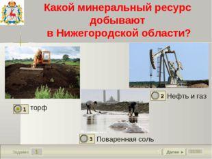 1 01:56 Задание Какой минеральный ресурс добывают в Нижегородской области? то
