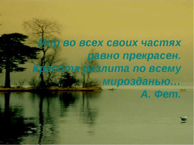 Мир во всех своих частях равно прекрасен. Красота разлита по всему мирозданью...