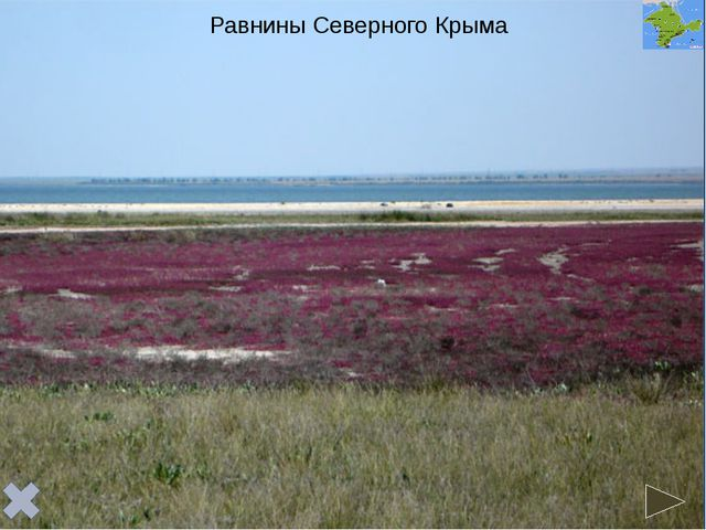 Равнинный Крым имеет платформенное строение и расположен в пределахСкифской...