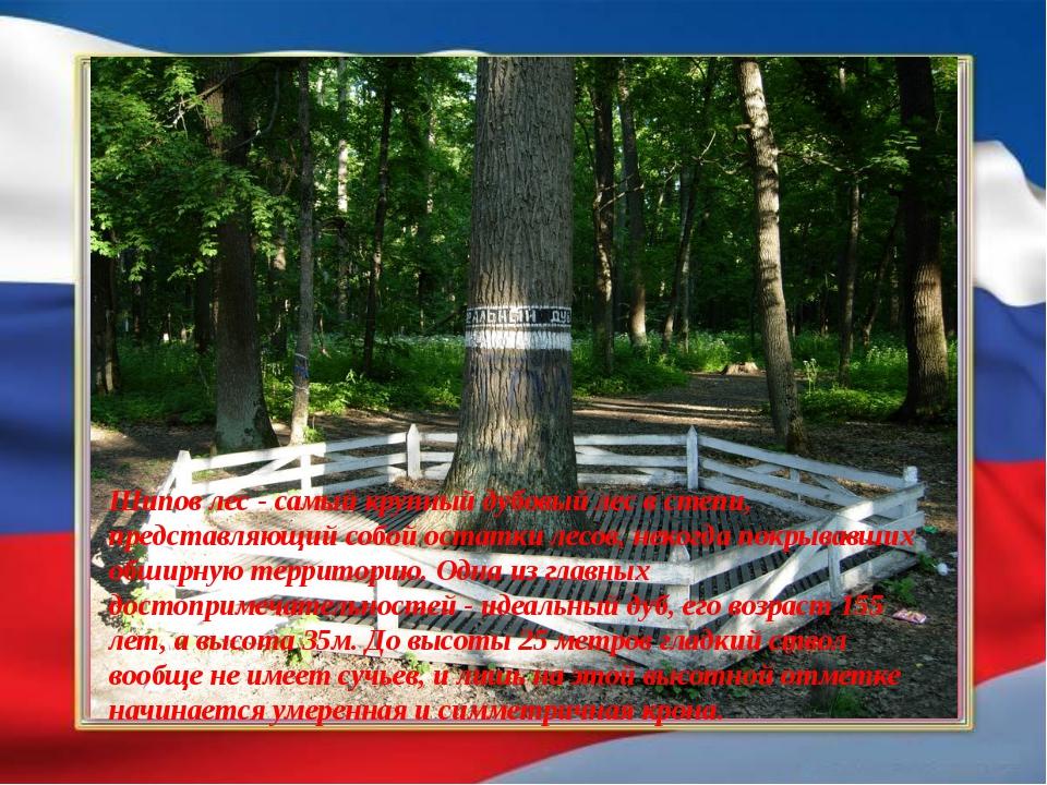 Лесной массив Шипова дубрава получил свое название при Петре I от английског...