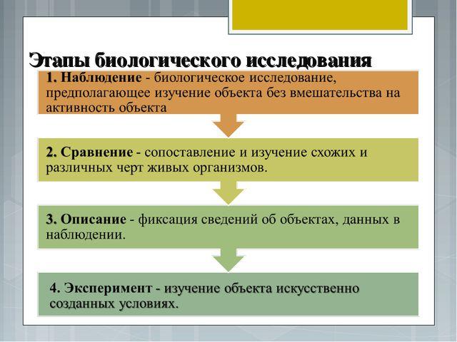 Этапы биологического исследования