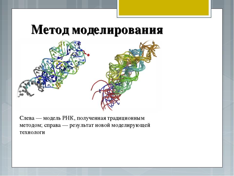 Метод моделирования Слева — модель РНК, полученная традиционным методом; спра...