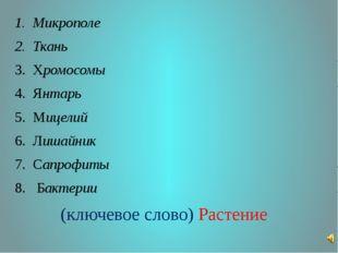 Микрополе Ткань Хромосомы Янтарь Мицелий Лишайник Сапрофиты Бактерии (ключево