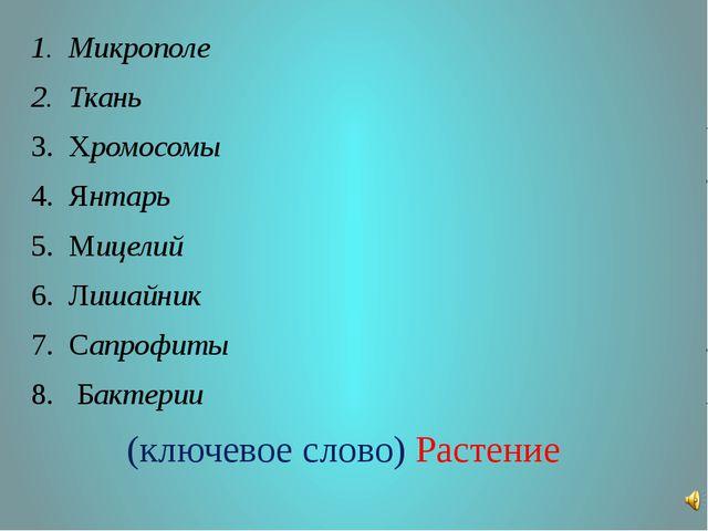 Микрополе Ткань Хромосомы Янтарь Мицелий Лишайник Сапрофиты Бактерии (ключево...