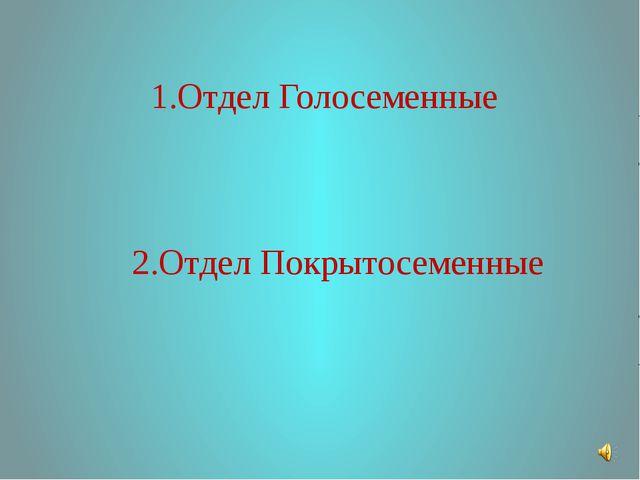 1.Отдел Голосеменные 2.Отдел Покрытосеменные