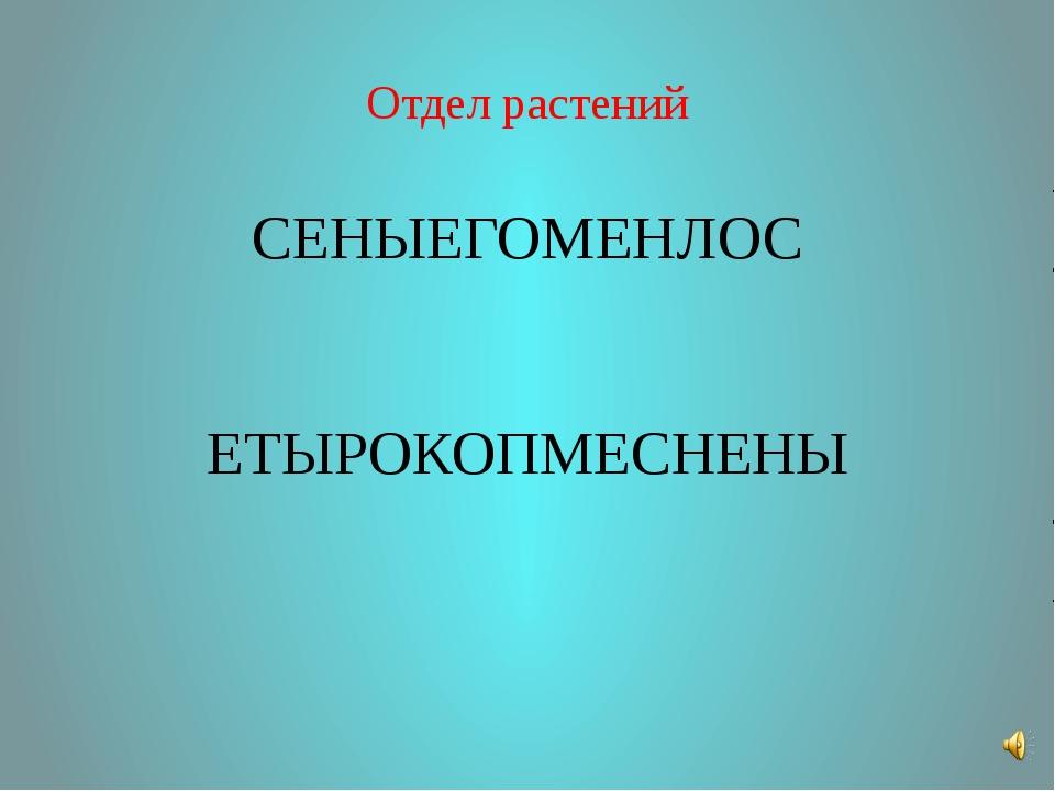 Отдел растений СЕНЫЕГОМЕНЛОС ЕТЫРОКОПМЕСНЕНЫ