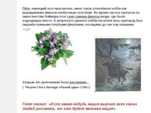 Гёте, немецкий поэт-мыслитель, имел такое утончённое хобби как выращивание фи