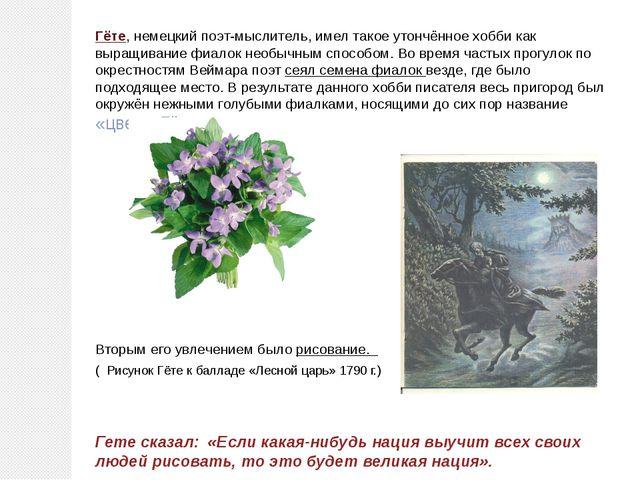 Гёте, немецкий поэт-мыслитель, имел такое утончённое хобби как выращивание фи...