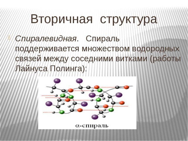 Вторичная структура Спиралевидная. Спираль поддерживается множеством водородн...