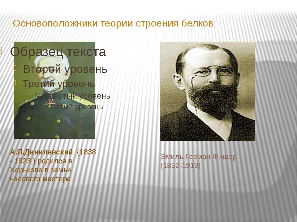 Основоположники теории строения белков А.Я.Данилевский (1838 - 1923 ) родился...